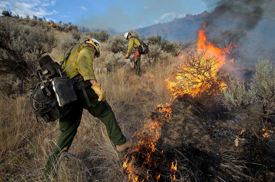 Kevin Green, left, tries to stamp down flames while Brandon Scott uses a chainsaw to cut sagebrush as a wildfire threatens eight homes on Skyline Drive in Wenatchee, Wash., early Sunday, July 6, 2014. Fire officials told residents to be ready to evacuate as the wildfire spread to several ridge lines behind the community on Sunday morning. The two are firefighters for the forest service based out of the Entiat Ranger District.  Photo: Don Seabrook, Associated Press