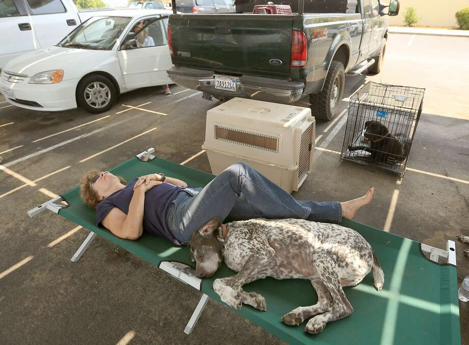 Cheryl Brown, who was evacuated from her home that was in the path of the Butts Fire, rests on a cot at Middletown High School in Middletown Calif., with her dogs Dutch, front, and Buster, in kennel, Wednesday, July 2, 2014. Photo: Kent Porter, Associated Press