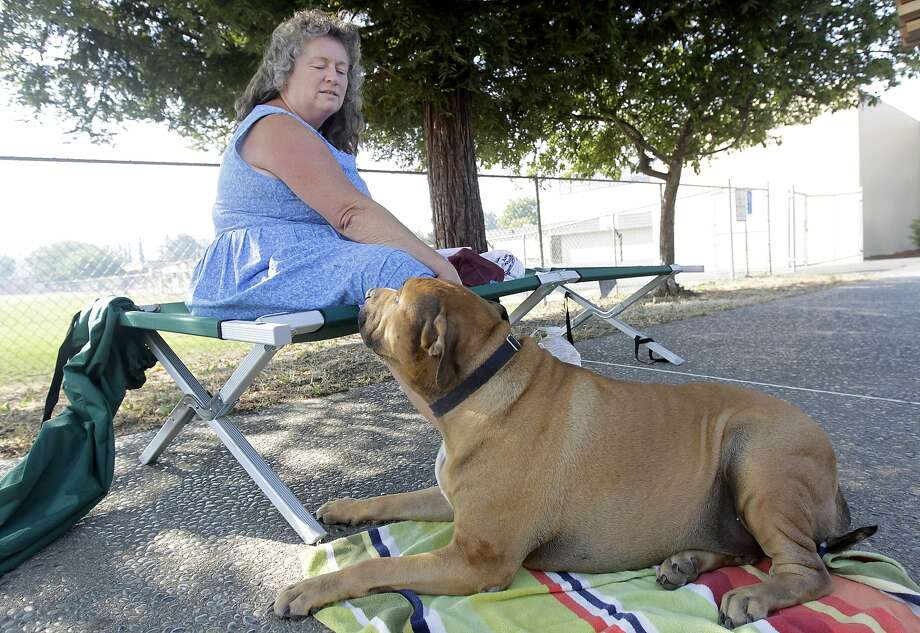 Beth Huckins and her dog Lucas wait out a wildfire at the Middletown High School evacuation center in Middletown, Calif., on Wednesday, July 2, 2014. A raging wildfire in rural Northern California has spread over 5 square miles and forced the evacuation of 200 homes in Napa County. (AP Photo/San Francisco Chronicle, Paul Chinn)MANDATORY CREDIT PHOTOG & CHRONICLE; MAGS OUT; NO SALES Photo: Paul Chinn, Associated Press