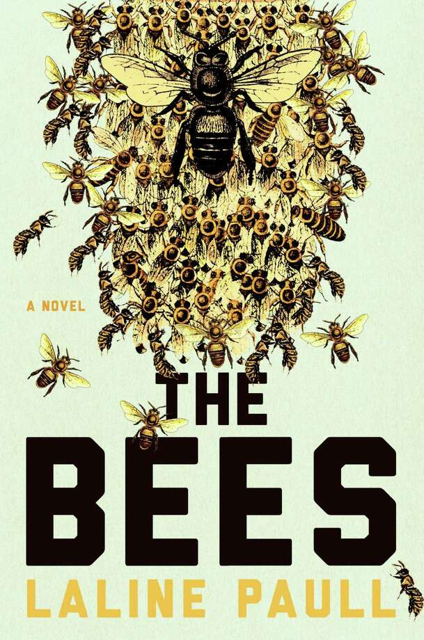 "Looking for a good read?  Greenwich Library's Kate Petrov recommends ""The Bees."" Photo: Contributed Photo / Greenwich Citizen"