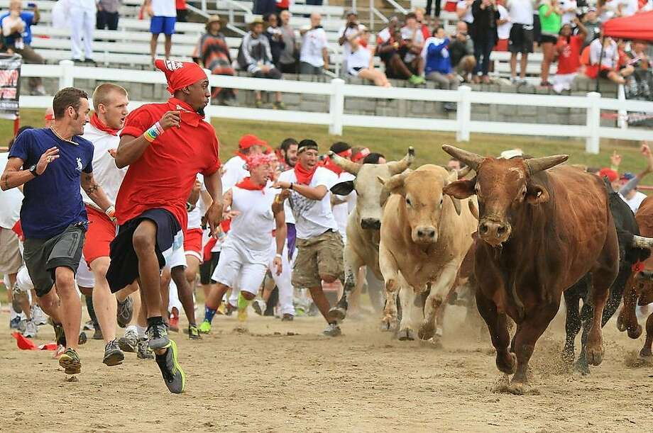 Organizers for the Great Bull Run stress the event is dangerous. Participants run alongside 18 bulls on a make-shift track at the Alameda County Fairgrounds. The event will be held on Sat. July 26. Photo: The Great Bull Run