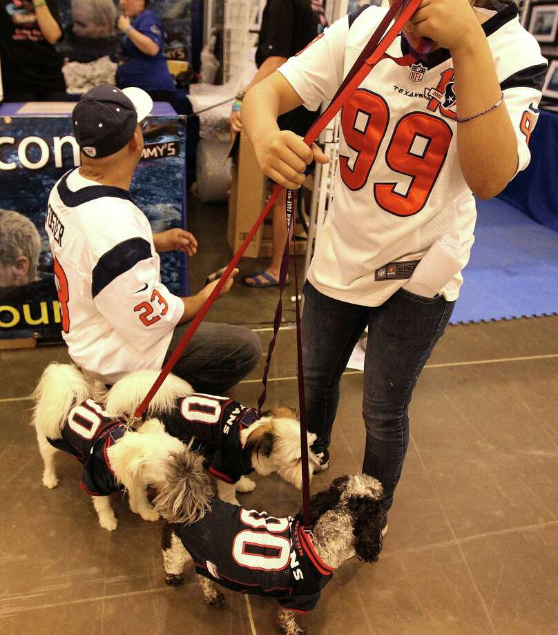 Mark Luna and his niece Sariah Luna, 11, take Krueger, Myers and Liliy Bear, for a walk dressed in Texans jerseys around the 36th Annual Reliant Park World Series of Dog Shows, Saturday, July 20, 2013, in Houston.  ( Karen Warren / Houston Chronicle ) Photo: Karen Warren, Staff / © 2013 Houston Chronicle