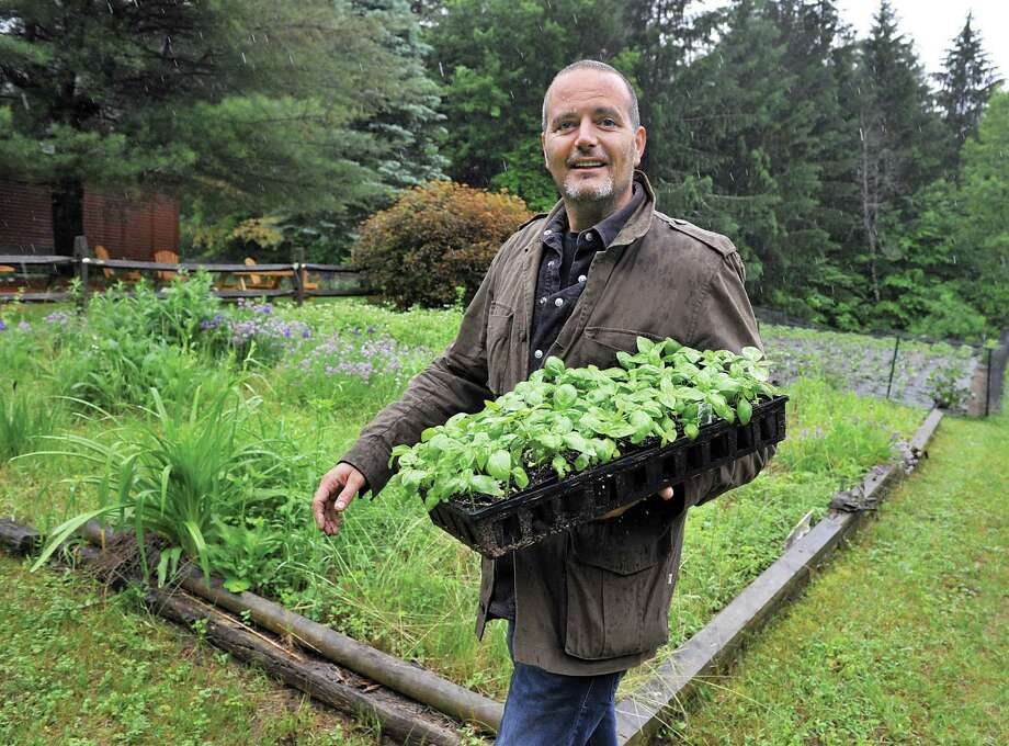 Restaurateur David Zecchini carries a tray of basil plants out to the gardens at his DZ Farm in Galway, NY. The 3,200 square-foot garden will supply produce to Zecchini's restaurants — Chianti Ristorante, Forno Bistro and Boca Bistro in the Spa City, Pasta Pane in Clifton Park. Photo: John Carl D'Annibale/Albany Times Union / 00027345A