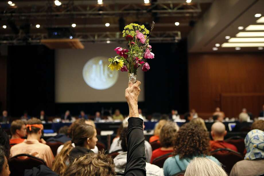 A protester held flowers high during the meeting at which the UC regents named Avi Oved to the board. Photo: Michael Short, The Chronicle