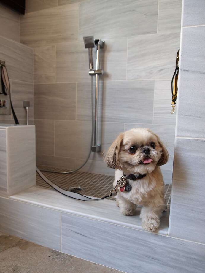 Standard Pacific Homes has a dog-friendly option with a wash station. Photo: Anthony Gomez, Associated Press