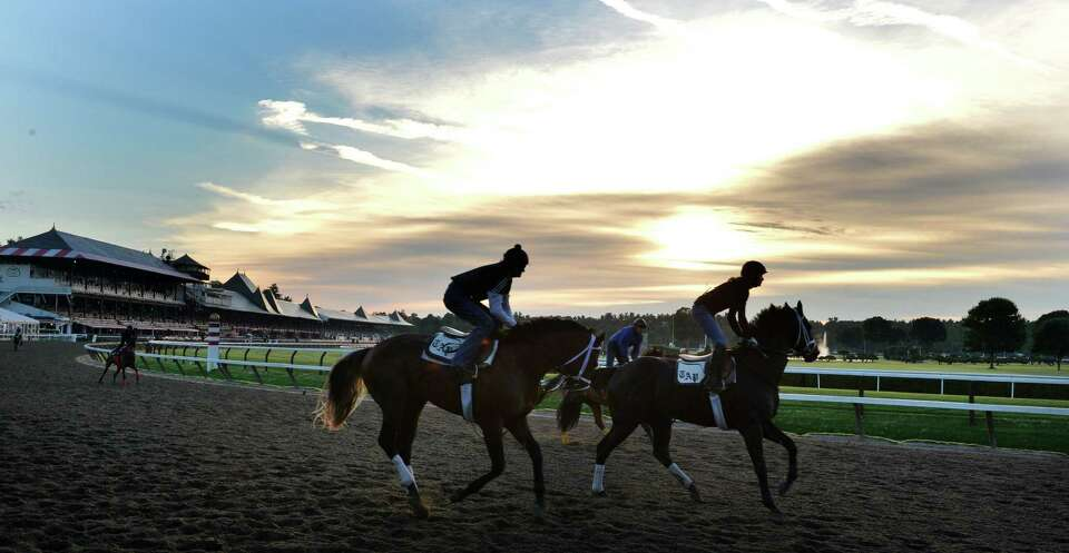 Horses are on the main track for their morning exercise Thursday, July 17, 2014, at Saratoga Race Co