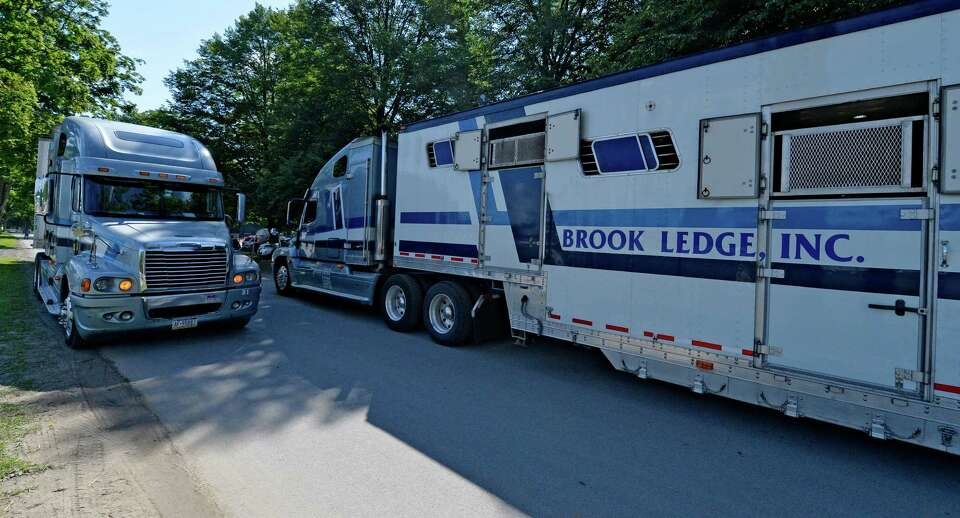 Horse trailers enter and exit as they off load their cargo and head out for more horses Thursday mor