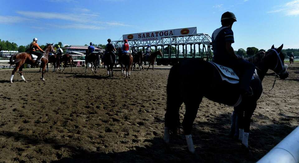 Horses gather near the starting gate for gate training on the main track early Thursday morning, Jul