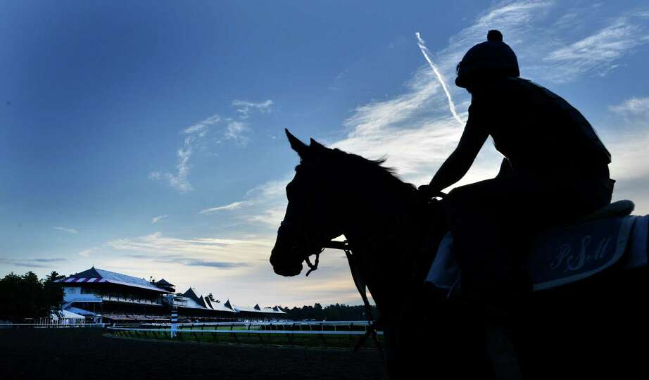 Horses are on the main track for their morning exercise Thursday morning, July 17, 2014, at Saratoga