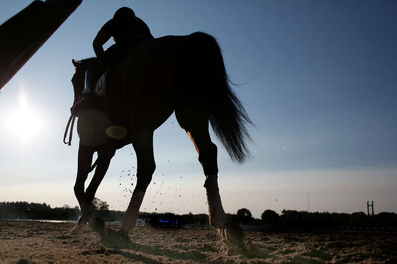 Horses warm up during opening day at Saratoga Race Track on Friday, July 18, 2014 in Saratoga Spring