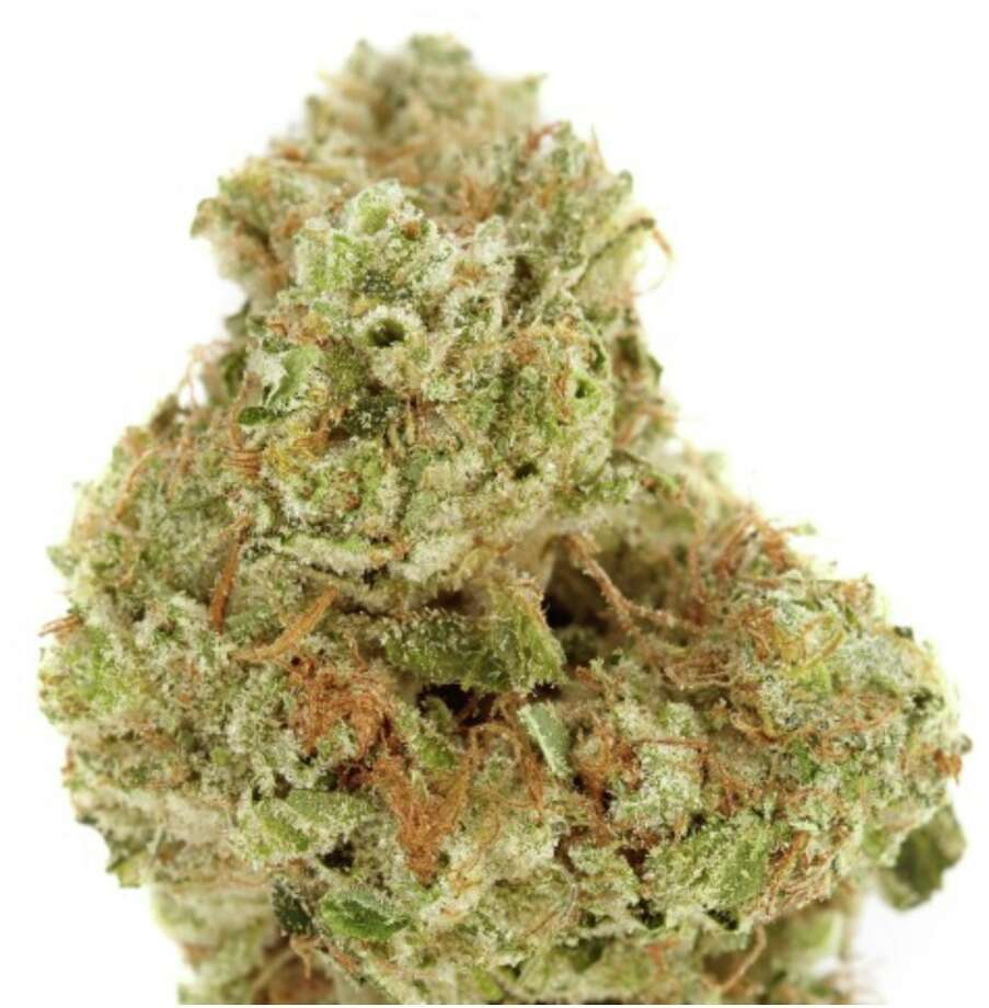 Harborside's Chem Scout is award-winning.