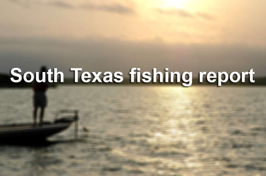 Your texas weekend fishing report for all the hot water for San antonio fishing spots