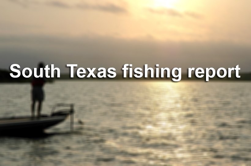 texas fishing report houston chronicle