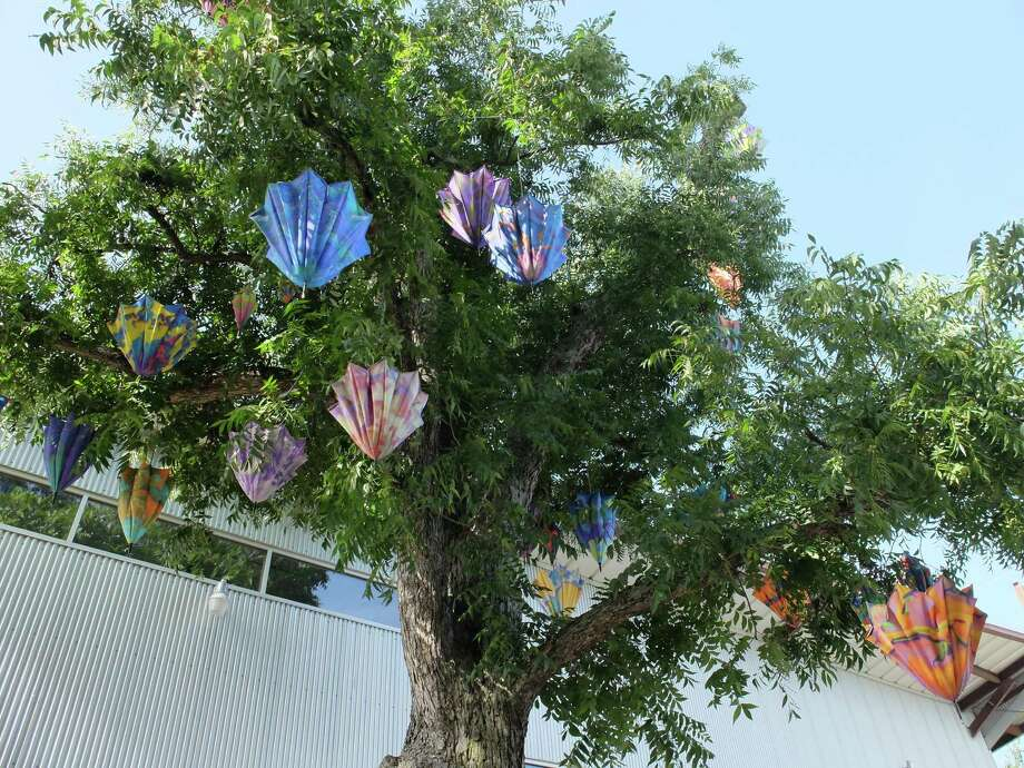 """Jo Ann Fleischhauer's """"Sexual Selection,"""" an installation of 116 custom-printed parasols, hangs in large oak trees beside Inversion Coffee House and Art League Houston through Saturday. Photo: Molly Glentzer"""