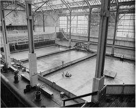 SUTRO1/C/30JUN99/MN/FILE--Sports swimming pool inside of Sutro Baths IN 1952. CHRONICLE PHOTO BY JOE ROSENTHAL