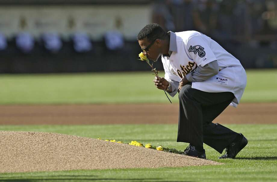 Rickey Henderson places a rose on the pitcher's mound to honor the late Bob Welch. Photo: Ben Margot, Associated Press