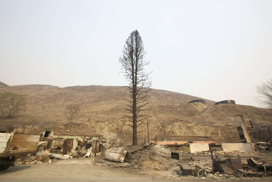 The remains of a tree and two homes stand in Pateros, Wash., about 100 miles east of Seattle. The Carlton Complex fire has razed up to 100 homes, forced evacuations and continues to threaten communities. Photo: Stephen Brashear, Getty Images
