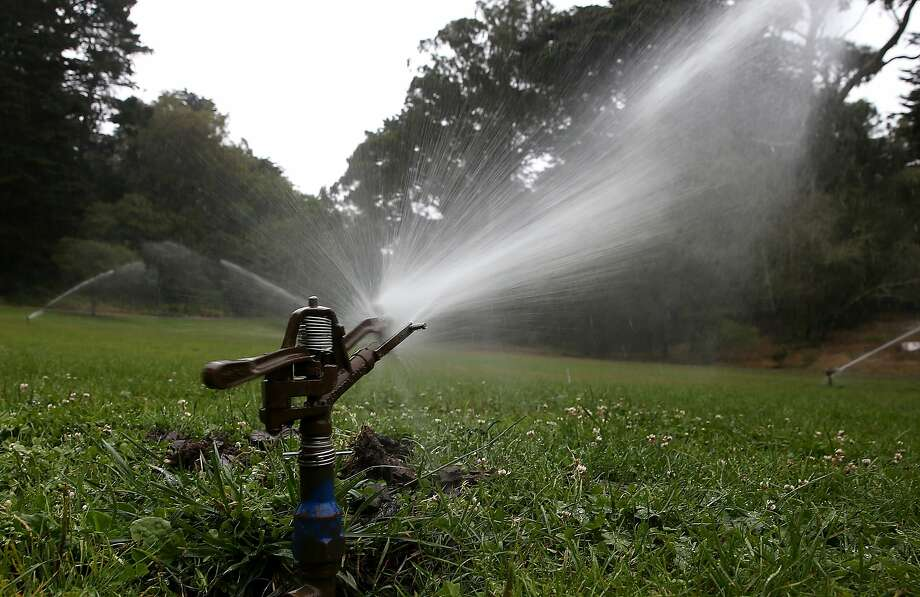 Sprinklers water a lawn in Golden Gate Park on July 15, 2014 in San Francisco, California. A man was attacked in the same park Thursday morning by two dogs and their pipe-wielding owner, police said. (Photo by Justin Sullivan/Getty Images) Photo: Justin Sullivan, Getty Images
