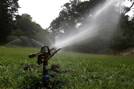 SAN FRANCISCO, CA - JULY 15:  Sprinklers water a lawn in Golden Gate Park on July 15, 2014 in San Francisco, California. As the California drought continues to worsen and voluntary conservation is falling well below the suggested 20 percent, the California Water Resources Control Board is considering a $500 per day fine for residents who waste water on landscaping, hosing down sidewalks and car washing.  (Photo by Justin Sullivan/Getty Images)