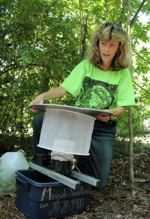 Lynne Aldrich, Environmental Services Manager for The Woodlands Township, sets a mosquito trap. Photo: Jerry Baker, Freelance / Freelance