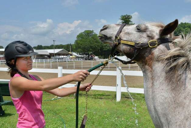 Randi Stark, 14, cools down her sister's pony Annie on opening day of the Saratoga County Fair Tuesday July 22, 2014, in Ballston Spa, NY.  (John Carl D'Annibale / Times Union) Photo: John Carl D'Annibale / 00027870A