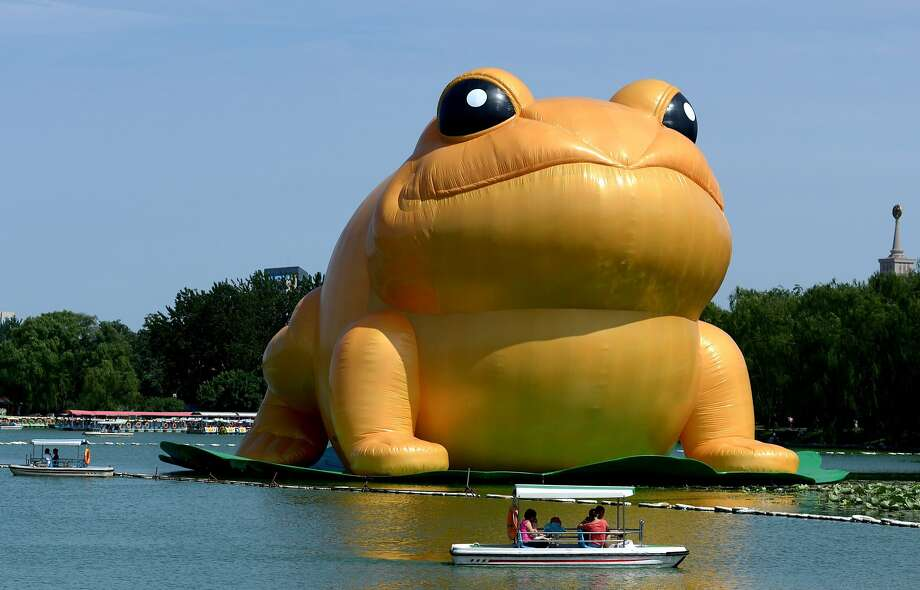 "The face was familiar:China has deleted Internet articles about artist Guo Yongyao's ""big golden toad,"" shown here in Beijing's Yu Yuan Tan Park, after social media users compared the puffed-up inflatable to a former Communist Party chief. Photo: Wang Zhao, AFP/Getty Images"