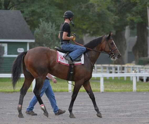 Jockey Brian Hernandez sits atop Pulpits Legacy as he walks in perfect step with trainer Ian Wilkes as they leave the main track early Wednesday morning July 23, 2014 after his exercise on the main track at the Saratoga Race Course in Saratoga Springs. Photo: SKIP DICKSTEIN, ALBANY TIMES UNION