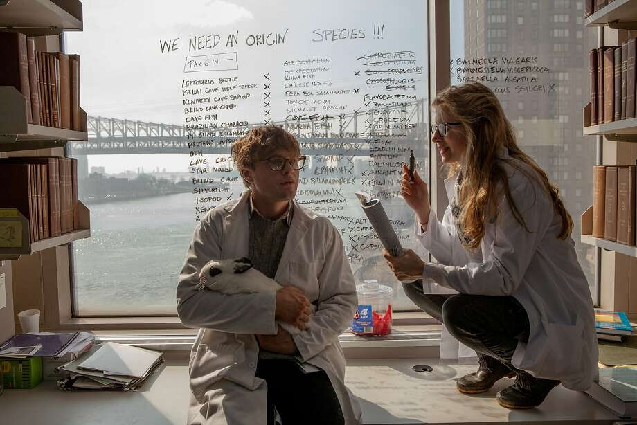 "Michael Pitt, the brash young scientist, and Brit Marling, his brilliant lab partner, in ""I Origins."" Photo: Jelena Vukotic, Fox Searchlight"