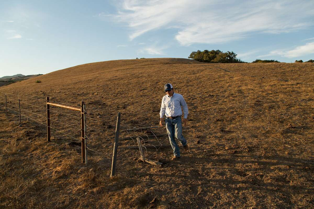 General manager Ben Higgins at the 82,000 acre Hearst Ranch in San Simeon, Calif., Monday July 22, 2014.