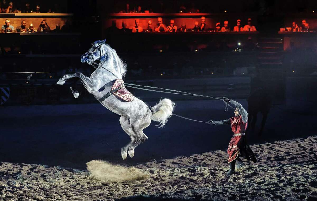 A specially trained horse leaps on command as a knight at Medieval Times in Buena Park, California, leads him prior to a jousting tournament.