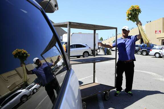 Moe Tabar, owner of Divisadero Flowers, pulls sunflowers off a cart while loading his van at the Flower Mart in San Francisco, CA, Thursday, July 24, 2014.