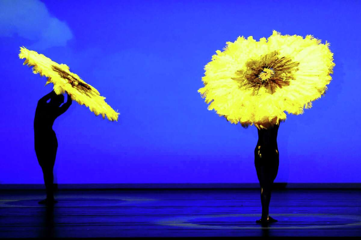 The MOMIX dance company presents its production of Botanica on Thursday, Aug. 1, 2013, at the Saratoga Performing Arts Center in Saratoga Springs, N.Y. Botanica fuses elements of dance, theater and cinema to create larger-than-life images from the natural world. (Cindy Schultz / Times Union)