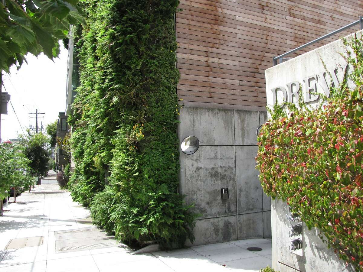 The Drew School's Cuddeback Wing, designed by French architect Patrick Blanc, is San Francisco's most ambitious example of a