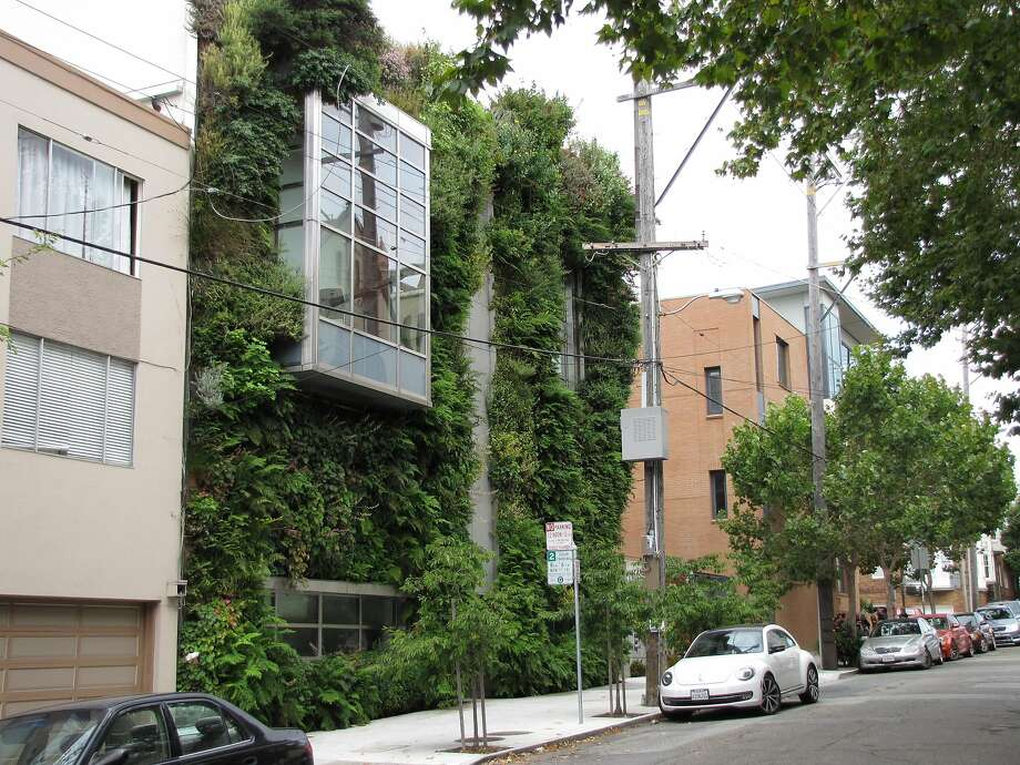 "The Drew School's Cuddeback Wing, designed by French architect Patrick Blanc, is San Francisco's most ambitious example of a ""vertical garden."" It is located on Broderick Street just south of California Street, near Pacific Heights. Photo: John King"