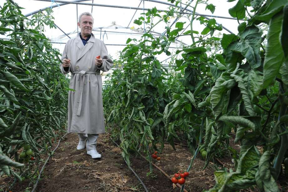 France:  French chef Alain Passard holds a seasonal tomato he picked in his vegetable garden in Fille-sur-Sarthe, western France. Since 2002, Passard, the head of the three Michelin starred restaurant L'Arpege in Paris, maintains his inspiration and passion from his vegetable garden, where he celebrates this week the appearance of the season's first tomatoes. To nurture his talent, head gardener Sylvain Picard manages 4 hectares of vegetables, fruits and aromatic roots, respecting nature's rhythm for the benefit of the luxurious restaurant's customers. Photo: JEAN-FRANCOIS MONIER, AFP/Getty Images