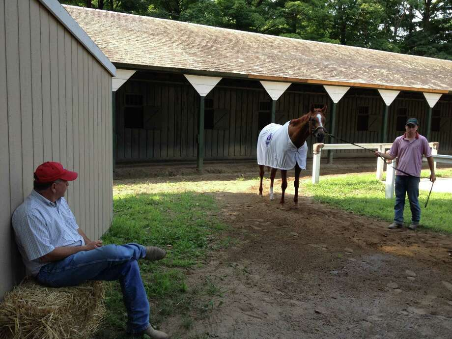 When you have a horse like Wise Dan in the barn, there are moments when you just want to sit back and admire him. That's exactly what trainer Charlie LoPresti was doing at the barn on the Saratoga backstretch Friday morning after the two-time Horse of the Year worked five-eighths of a mile on the Oklahoma Training Track's grass course. (Tim Wilkin / Times Union)