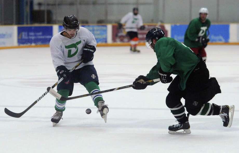Photos from the Danbury Whalers' Fifth Annual Summer All-Star Game at the Danbury Ice Arena in Danbury, Conn. Saturday, July 26, 2014. Photo: Tyler Sizemore / The News-Times