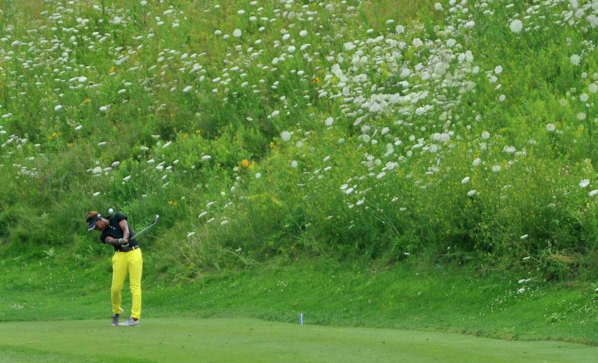 Sadena Parks hits her tee shot towards the 18th green during the final round of the SEFCU Championship, a Symetra Tournament, at Capital Hills golf course on Sunday, July 27, 2014, in Albany, N.Y. (Paul Buckowski / Times Union)