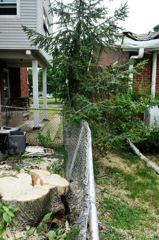 A view of the stump of of a large tree Monday, July 28, 2014, which cracked and lifted the roots up out of the ground Sunday as the tree fell on the home of Rachel Lewis and her boyfriend, Richard Naze in Watervliet, N.Y. The tree came down on their home Sunday afternoon when a strong storm came through the area.  (Paul Buckowski / Times Union) Photo: Paul Buckowski / 00027959A