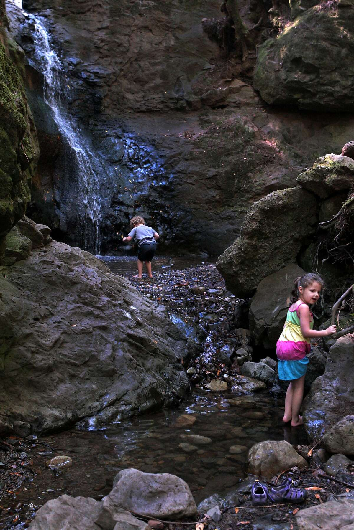William Holley, 4, looks for rocks and sister Gianna, 5, of Towaco, New Jersey looks back at their mother, Heather as they wade and climb toward Cascade Falls on Thursday, July 24, 2014 in Mill Valley, Calif. Heather Holley said she grew up in Mill Valley and brought her children to see the falls while visiting the Bay Area.