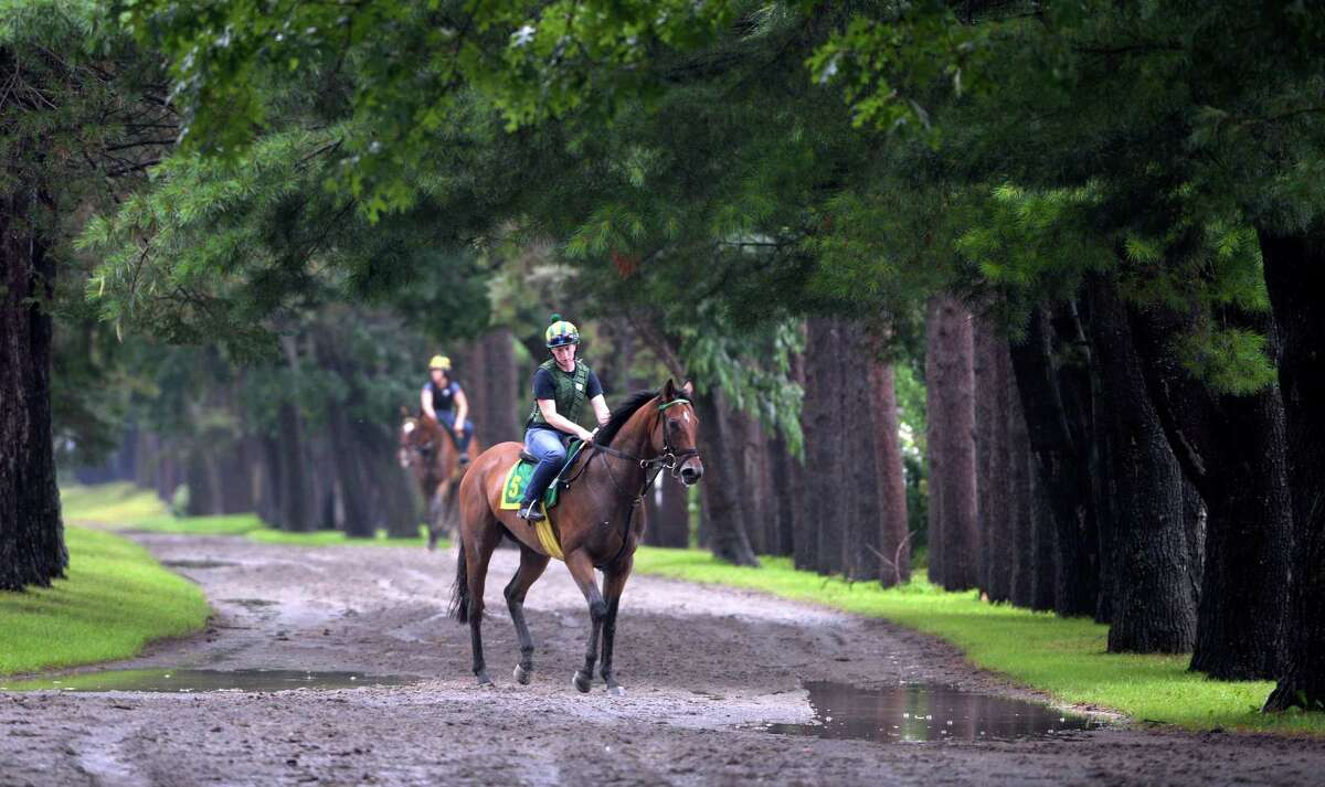 Horses dodge the puddles on the way from the track for their exercise after heavy rains hit the area Monday morning, July 28, 2014, at the Oklahoma Training Center in Saratoga Springs, N.Y. (Skip Dickstein / Times Union)
