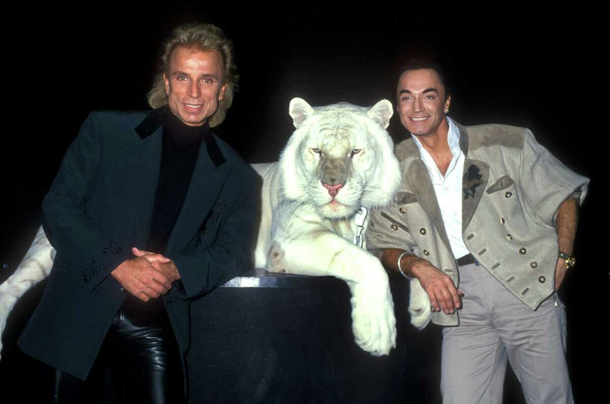 Siegfried and Roy, the German-American tiger-taming duo who also performed magic tricks -- because apparently taming giant cats wasn't enough for audiences -- performed regularly at the Mirage Resort and Casino in Las Vegas from 1990 to October 2003. The duo seemed like a Vegas mainstay until Montecore, the 7-year-old white tiger, bit Roy in the neck during a performance. Roy suffered severe blood loss on his way to he hospital, but made sure to reiterate that Montecore should not suffer any harm as a result. Supposedly, it was Roy's jerky movements that caused the tiger to pounce. Roy's recovery was slow and arduous and the show was put on indefinite hiatus. Siegfried and Roy retired from show business in 2010, and Montecore died at age 17 of an illness in 2014.  Pictured: Siegfried & Roy and one of their Royal Snow White Tigers (Photo by Barry King/WireImage)