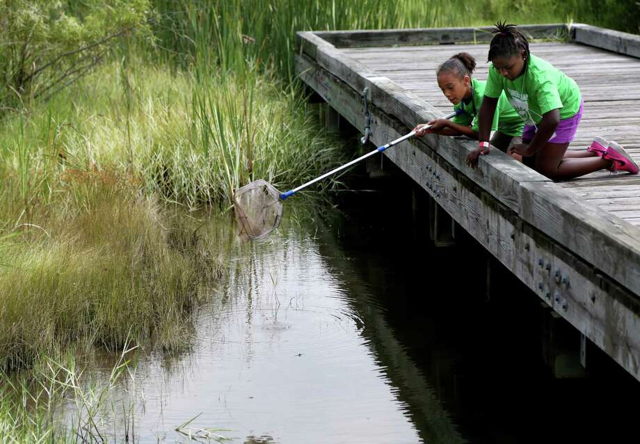 """Trinity Menson, nine, left, and Morgan Buggs, nine, of the Linkwood Community Center do net dipping to retrieve small fish as part of the """"Eat or Be Eaten"""" program at the Discovery Camp at Challenger Seven Memorial Park Thursday, July 24, 2014, in Webster, Texas. The camp gives children a chance to get outo the city, experience nature and learn about the environment. ( Gary Coronado / Houston Chronicle ) Photo: Gary Coronado, Staff / © 2014 Houston Chronicle"""