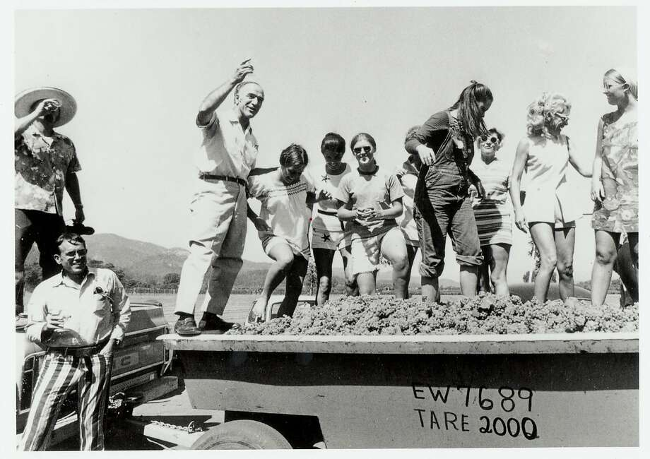 Robert Mondavi leading the grape crush at one of his winery's early harvests. Photo: Handout, SFC