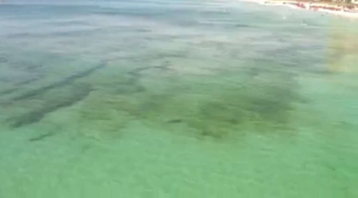 At first the shark is just a dark shadow in the distance but it quickly swims up close and personal to one woman who was rescued by a life guard.