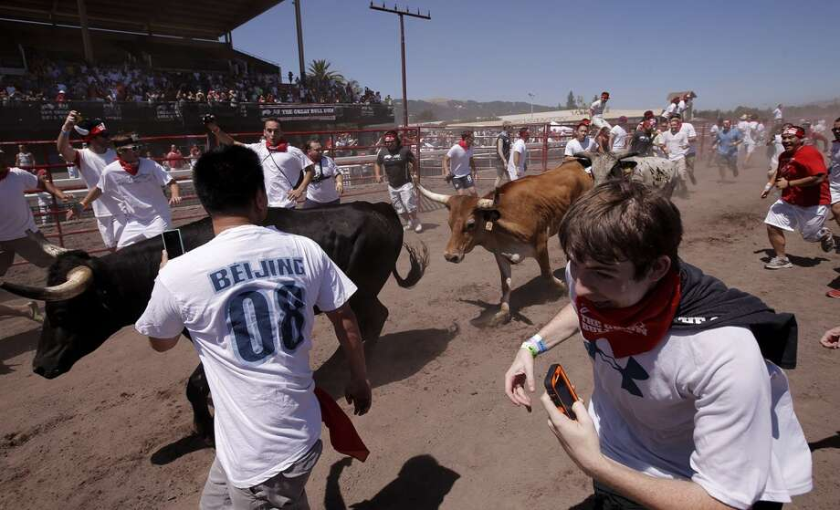 Runners scramble as the bulls approach during The Great Bull Run on Saturday July 26, 2014, at the Alameda County Fairgrounds in Pleasanton, Calif. Photo: Michael Macor, The Chronicle