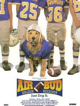 """Air Bud: Golden Receiver"" - Picking up where the original Air Bud left off, Josh is the owner of golden retriever Buddy, who now plays football instead of basketball. Josh reluctantly becomes his school's new quarterback, and Buddy catches the spirit and joins the team too. Available Aug. 1 Photo: Handout"