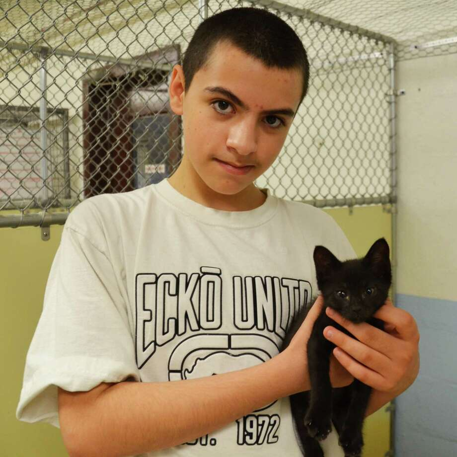 """Anthony Sandoval shows off the cat he adopted during the Feline Fest on Saturday, July 26. More than 100 cats and kittens found new homes at the event, celebrated by the Mohawk Hudson Humane Society of Menands and Animal Protective Foundation of Scotia. It took place from July 24 to July 27. Anthony?s pet was Cadillac, who was renamed Robin because Anthony and his mom have """"Batman"""" at home. (Paula Walker)"""