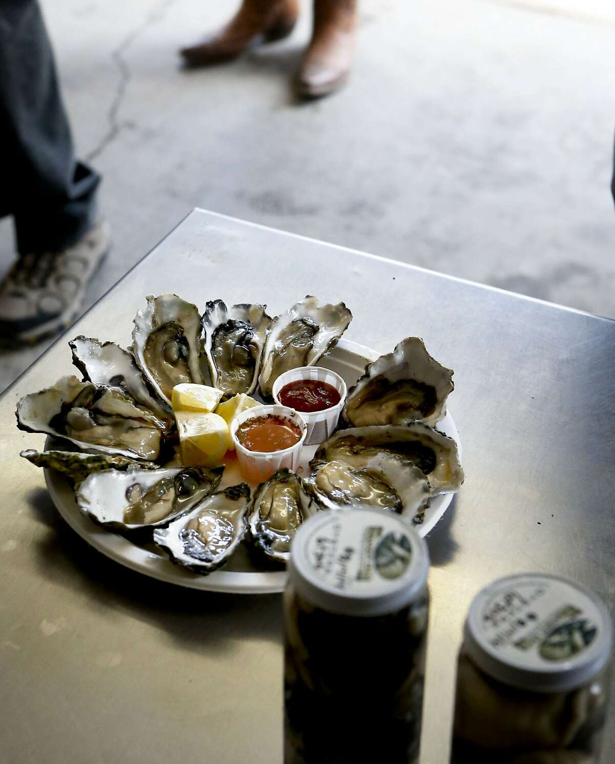 Oysters at the Drakes Bay Oyster Company as seen on Thursday July 31, 2014, in Inverness, Calif. The final day that the public can purchase oysters from the Drake's Bay Oyster Company as their lease expires with the National Park Service and the area reverts to a marine sanctuary.