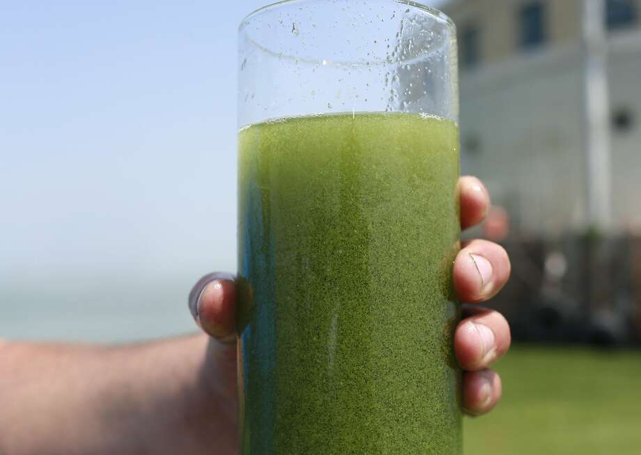 Who wants a refreshing glass of Lake Erie water? Toledo was drinking tap water again Monday after a weekend algae bloom near the city water intake crib prompted a warning for people to keep their spigots turned off. Subsequent tests showed that toxins had returned to acceptable levels, city officials said. Photo: Haraz N. Ghanbari, Associated Press